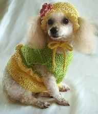 Etsy's OnceUponAPoodle sells crochet patterns for dogs