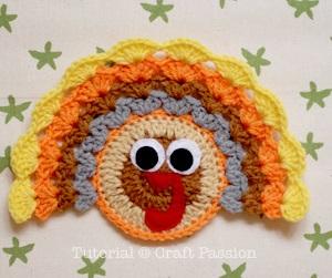 turkey-coaster-