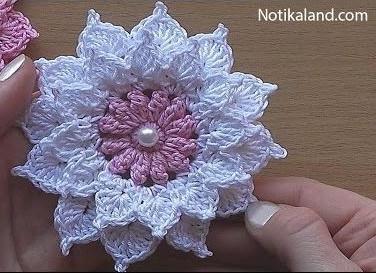 Flower 6 (2)